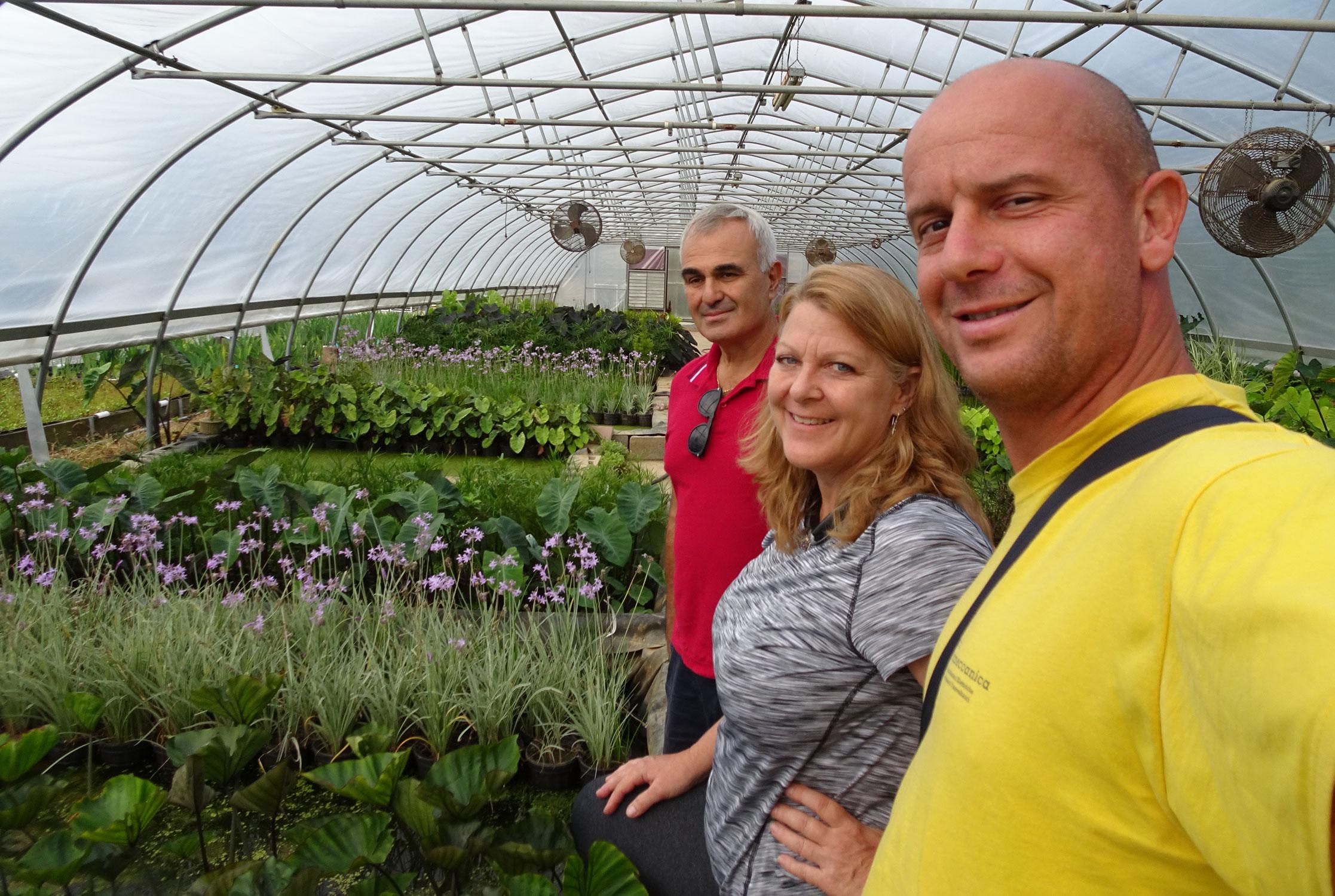 Maryland Aquatic Nursery greenhouse