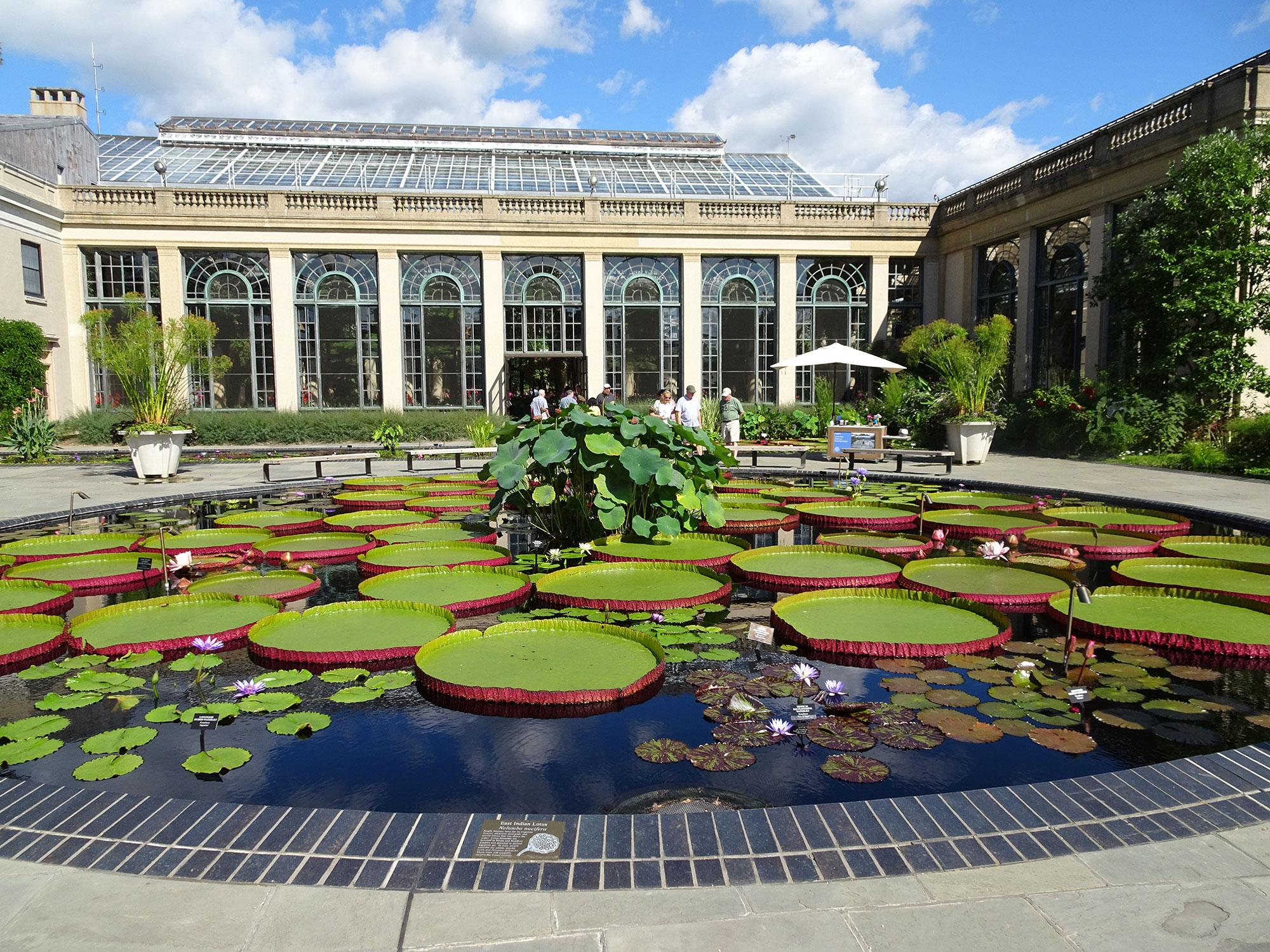 Victoria al Longwood gardens